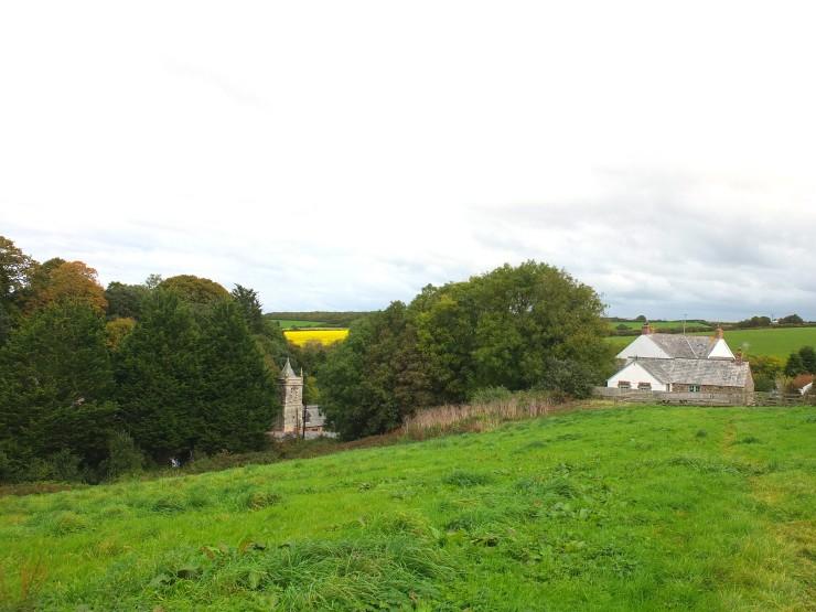 paddock view.jpg